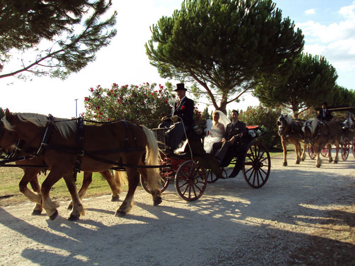 mariage images nimes